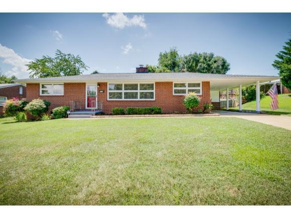 800 Carlisle Drive, Kingsport, TN 37660 (MLS #424064) :: The Baxter-Milhorn Group