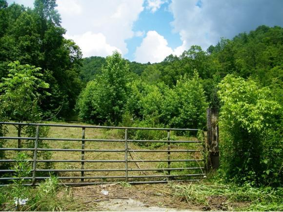 000 Flanary Road, Blackwater, VA 24221 (MLS #424065) :: Conservus Real Estate Group
