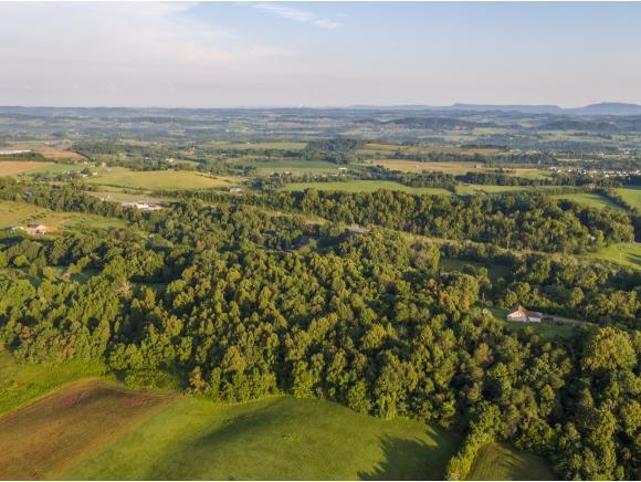 000 Mccarty Hollow Rd, Telford, TN 37690 (MLS #424143) :: Conservus Real Estate Group