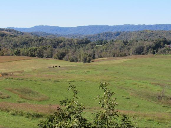 695 Buttermilk, Kingsport, TN 37660 (MLS #424467) :: Highlands Realty, Inc.