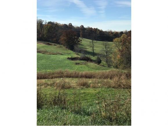 Lot 13 Hales Chapel Rd, Gray, TN 37615 (MLS #424471) :: Conservus Real Estate Group
