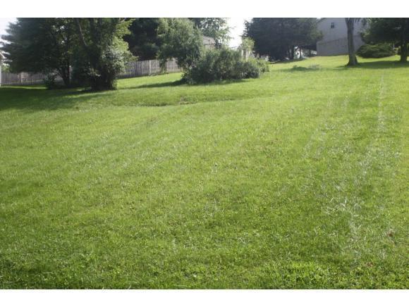 TBD Lakeshore Dr., Abingdon, VA 24211 (MLS #424505) :: Conservus Real Estate Group