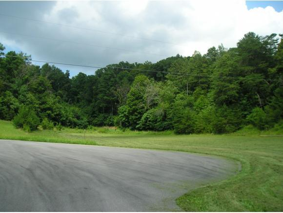 00 Whispering Pines Rd, Unicoi, TN 37692 (MLS #424526) :: The Baxter-Milhorn Group