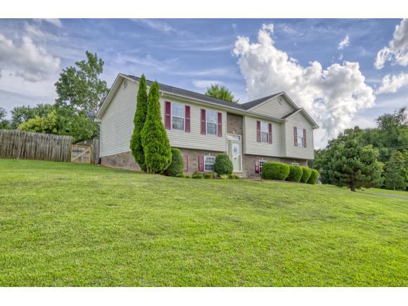104 Jenny Lane, Jonesborough, TN 37659 (MLS #424542) :: Conservus Real Estate Group
