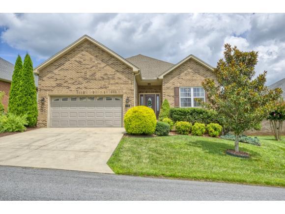 78 Thistledown Circle, Jonesborough, TN 37659 (MLS #424554) :: Conservus Real Estate Group