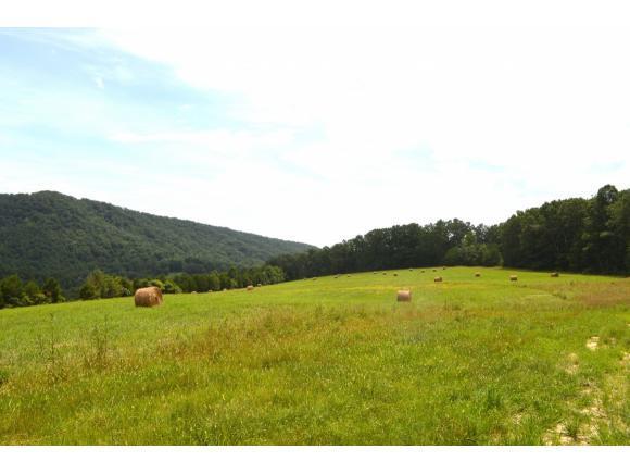 00 Tarpine Valley Rd., Rogersville, TN 37857 (MLS #424560) :: Highlands Realty, Inc.