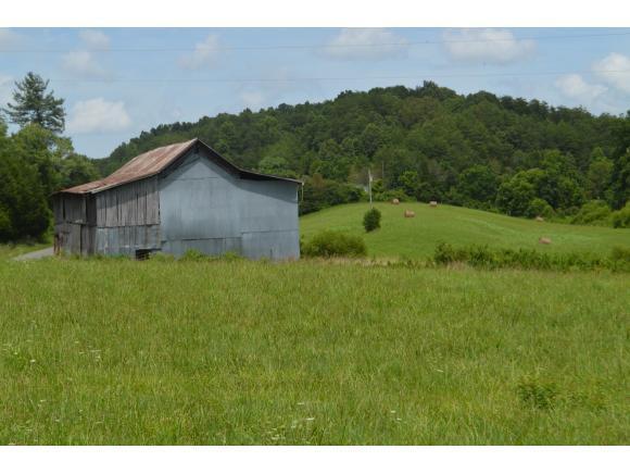 000 Tarpine Valley Rd., Rogersville, TN 37857 (MLS #424561) :: Highlands Realty, Inc.