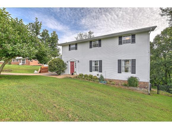 923 Martingale Drive, Greeneville, TN 37743 (MLS #424578) :: Conservus Real Estate Group