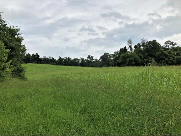 236 Loop Rd, Parrottsville, TN 37843 (MLS #424582) :: Highlands Realty, Inc.