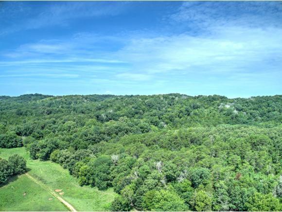 00 Kirk Lane, Greeneville, TN 37743 (MLS #424600) :: Conservus Real Estate Group