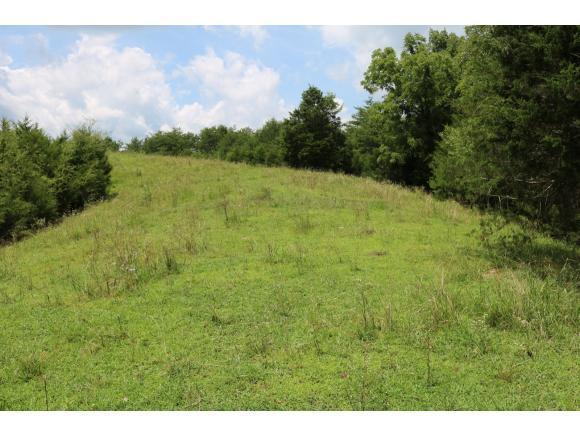 TBD Old Midway Road, Midway, TN 37809 (MLS #424627) :: Conservus Real Estate Group