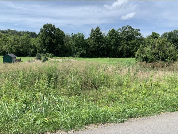 205 Davy Crockett Road, Limestone, TN 37681 (MLS #424647) :: Conservus Real Estate Group