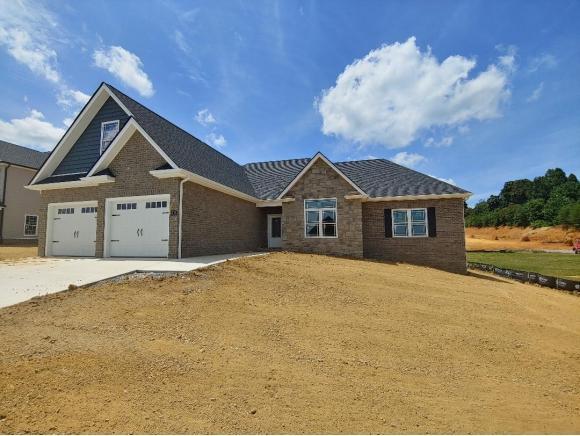 3308 Murrayfield Way, Kingsport, TN 37664 (MLS #424650) :: The Baxter-Milhorn Group