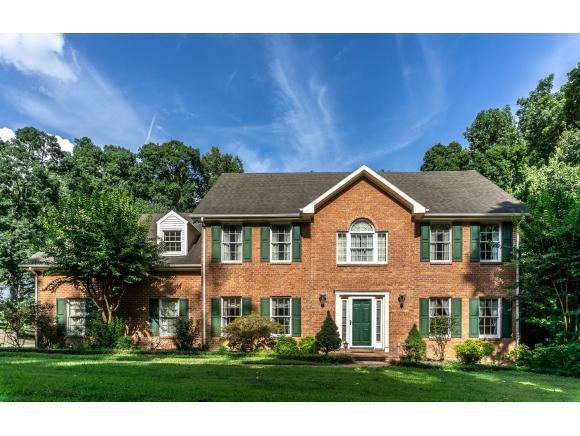 280 Grapevine Trail, Greeneville, TN 37745 (MLS #424654) :: Conservus Real Estate Group