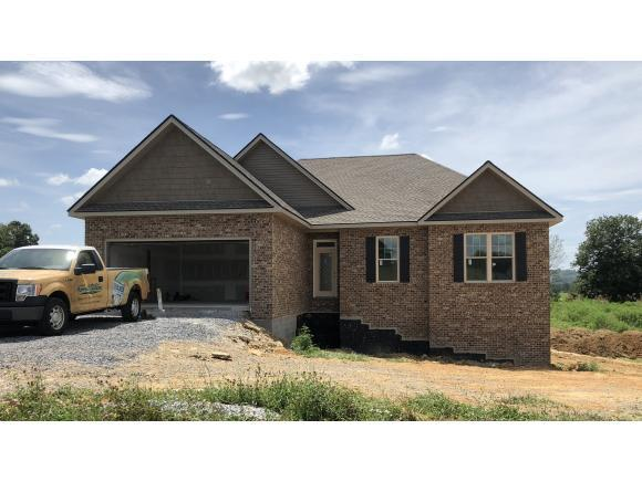 1270 Peaceful Dr, Jonesborough, TN 37659 (MLS #424690) :: Conservus Real Estate Group
