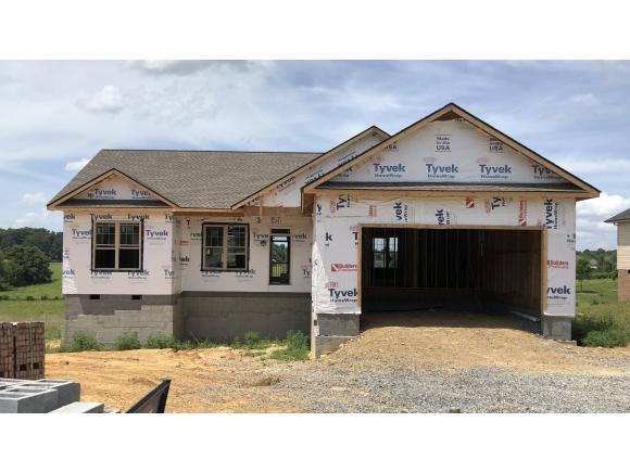 1244 Peaceful Dr, Jonesborough, TN 37659 (MLS #424696) :: Conservus Real Estate Group