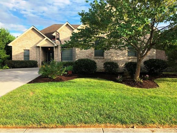 3 Alta Tree Ct, Johnson City, TN 37604 (MLS #424729) :: The Baxter-Milhorn Group