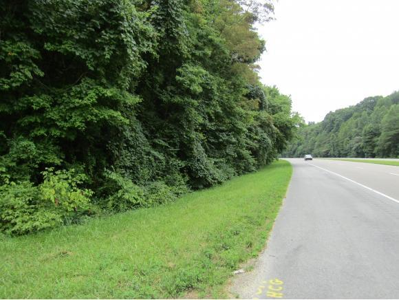 TBD Highway 11W, Surgoinsville, TN 37873 (MLS #424746) :: Highlands Realty, Inc.