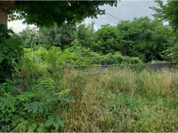 TBD Highland North Avenue, Greeneville, TN 37745 (MLS #424754) :: The Baxter-Milhorn Group