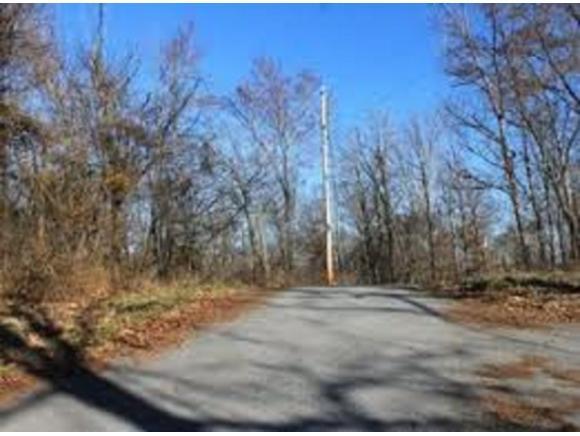 114 Rose Drive, Johnson City, TN 37615 (MLS #424757) :: The Baxter-Milhorn Group