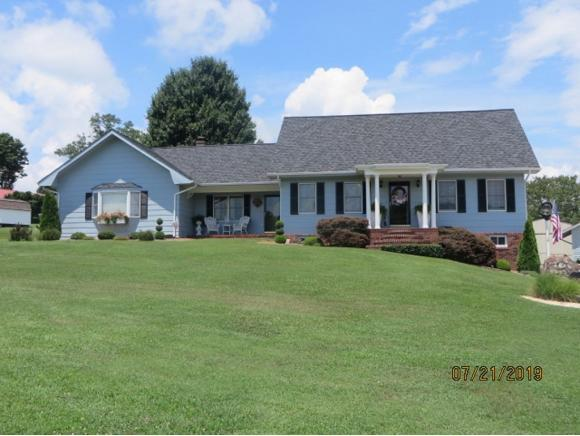 10081 Trading Post Lane, Bristol, VA 24202 (MLS #424760) :: The Baxter-Milhorn Group