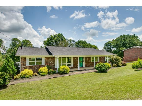 713 Foothills Road, Kingsport, TN 37663 (MLS #424767) :: The Baxter-Milhorn Group