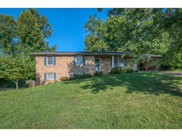 1040 Starling Dr, Kingsport, TN 37660 (MLS #424996) :: The Baxter-Milhorn Group
