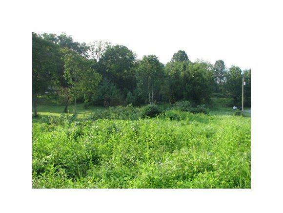 TBD Wycoff Drive, Abingdon, VA 24210 (MLS #425036) :: Conservus Real Estate Group