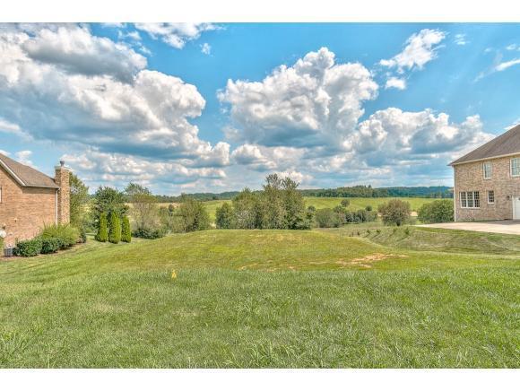 141 Laurel Ridge, Jonesborough, TN 37659 (MLS #425287) :: The Baxter-Milhorn Group