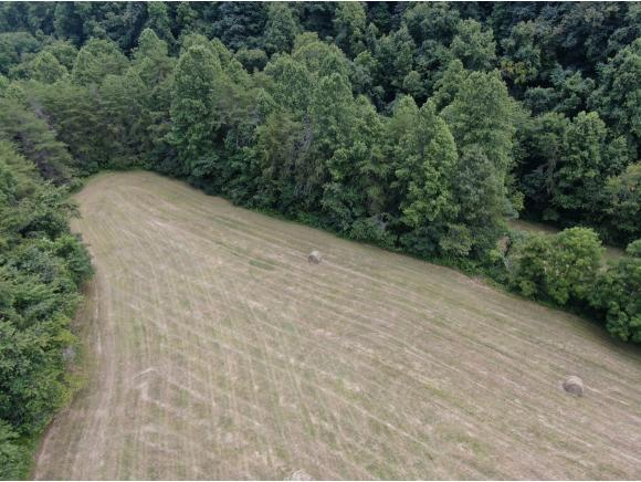 57.5 AC Caney Valley Road, Tazewell, TN 37879 (MLS #425328) :: Conservus Real Estate Group