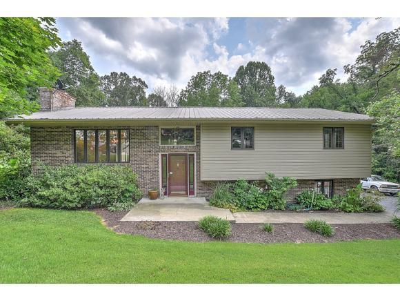 532 Ramblewood Drive, Mt. Carmel, TN 37645 (MLS #425336) :: The Baxter-Milhorn Group