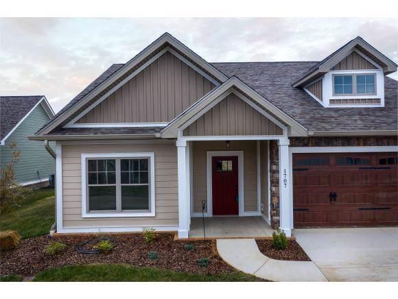 1707 Ethans Ct., Kingsport, TN 37664 (MLS #425448) :: Conservus Real Estate Group