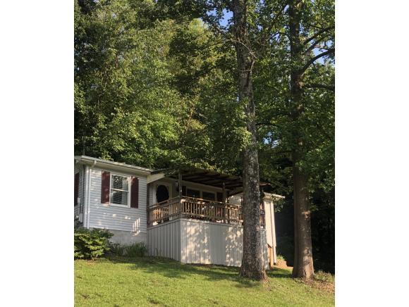 52 Harmony Drive, Bristol, VA 24201 (MLS #425514) :: Conservus Real Estate Group