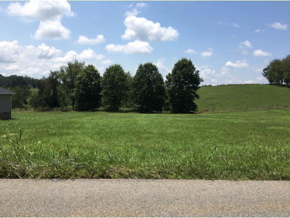 lot 18 Branch Street, Abingdon, VA 24210 (MLS #425651) :: Highlands Realty, Inc.