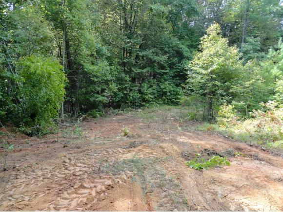 TBD Browns Branch Rd., Hampton, TN 37658 (MLS #425678) :: Highlands Realty, Inc.