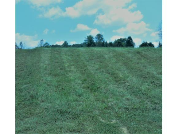 133 Forest Ln N, Blountville, TN 37617 (MLS #425691) :: Bridge Pointe Real Estate