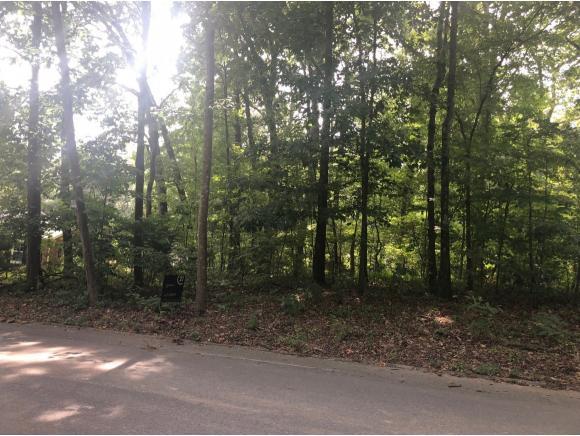 000 Dover Ave, Mt. Carmel, TN 37645 (MLS #425696) :: Bridge Pointe Real Estate