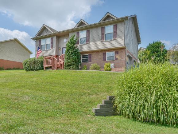 9 Mountain Creek Ct, Jonesborough, TN 37659 (MLS #425710) :: The Baxter-Milhorn Group