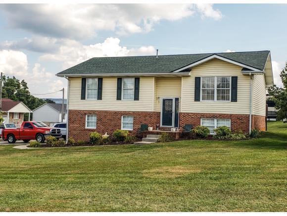 167 Chickasaw Cr, Church Hill, TN 37642 (MLS #425727) :: Highlands Realty, Inc.