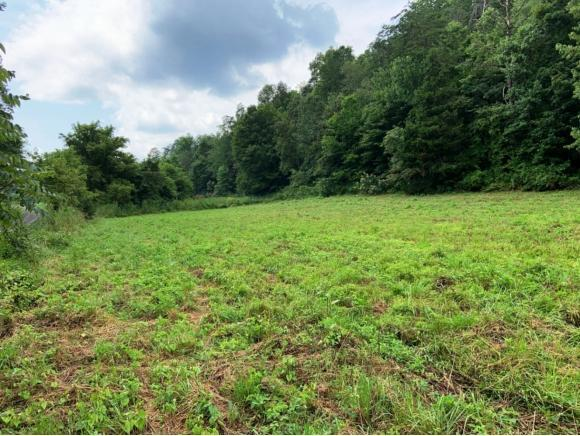 0000 Flanary Road, Blackwater, VA 24221 (MLS #425795) :: Conservus Real Estate Group