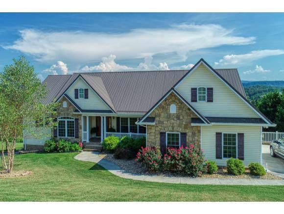 223 Roanoke Drive, Surgoinsville, TN 37873 (MLS #427169) :: The Baxter-Milhorn Group