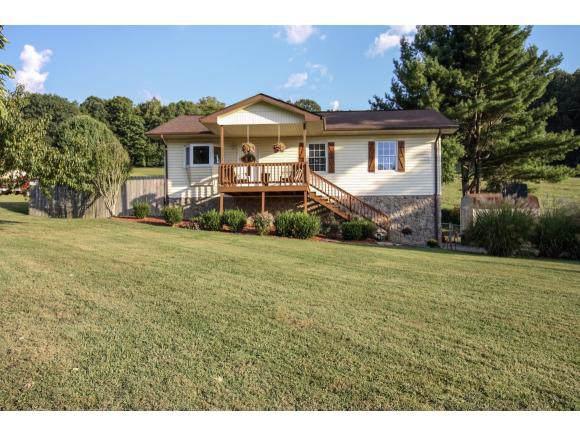 203 Hales Road, Jonesborough, TN 37659 (MLS #427185) :: Highlands Realty, Inc.