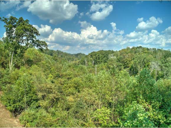 000 Sensabaugh Hollow Road, Mount Carmel, TN 37645 (MLS #427252) :: Conservus Real Estate Group