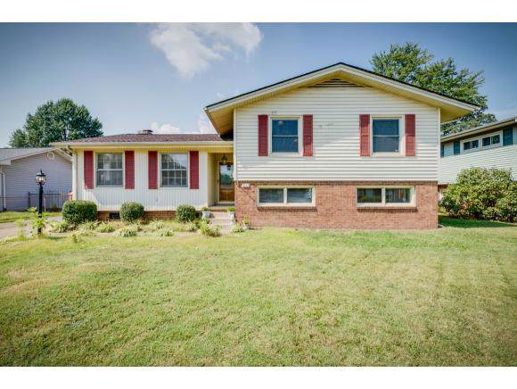 1917 Hermitage Drive, Kingsport, TN 37664 (MLS #427270) :: Bridge Pointe Real Estate