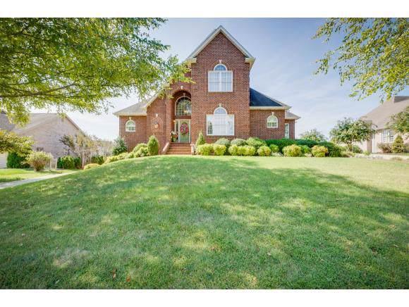 108 Warrior Falls Drive, Kingsport, TN 37664 (MLS #427272) :: Bridge Pointe Real Estate