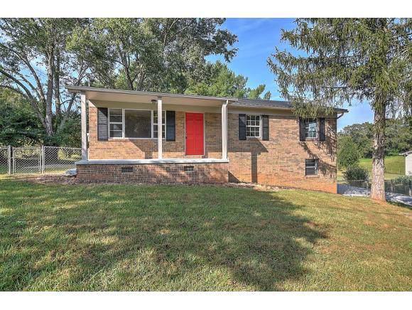 226 Schofield Drive, Greeneville, TN 37745 (MLS #427317) :: Conservus Real Estate Group
