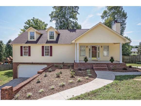 181 Ashley Dr, Mt Carmel, TN 37645 (MLS #427333) :: Conservus Real Estate Group