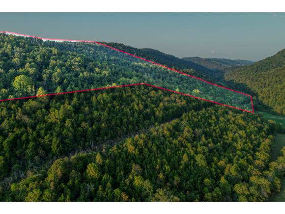 000 Kyle Valley Road, Rogersville, TN 37857 (MLS #427350) :: Highlands Realty, Inc.