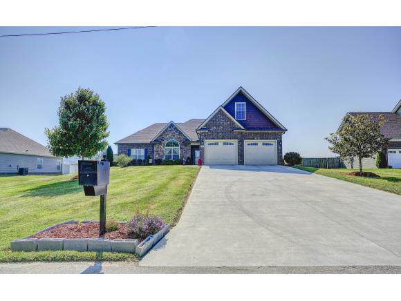 115 Victory Lane, Johnson City, TN 37615 (MLS #427370) :: The Baxter-Milhorn Group