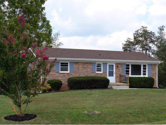 21148 Battle Hill Drive, Bristol, VA 24202 (MLS #427382) :: Conservus Real Estate Group
